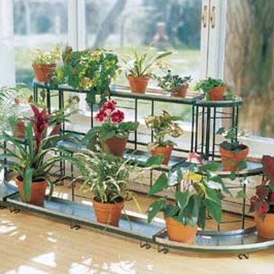 Indoor Gardening Gardening Indoors Houseplants Growing