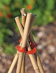 Garden Cane Connects, Set of 8