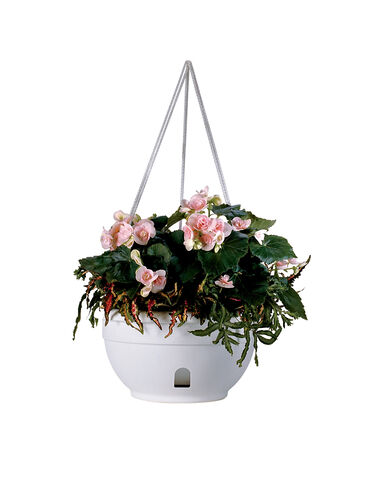 Self-Watering Hanging Basket