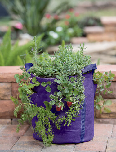Gardener's Best® Strawberry and Herb Grow Bag