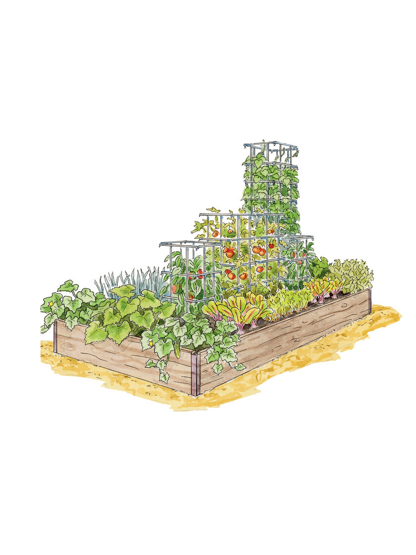 Pre Planned Flower Garden Designs: Plant It And Forget It Vegetable Garden Organic Seeds