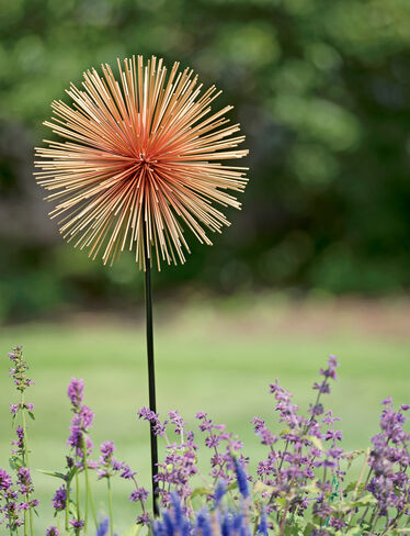 Allium Sunburst Stake, Large
