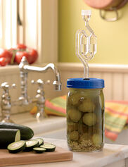 Perfect Pickling Kit