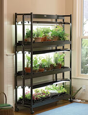 *Soil, seedlings and starter trays shown are not included