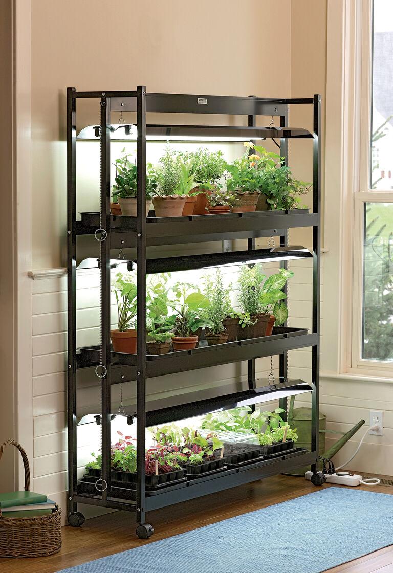Grow light stand 3 tier sunlite garden t 5 bulbs for Indoor gardening lighting guide