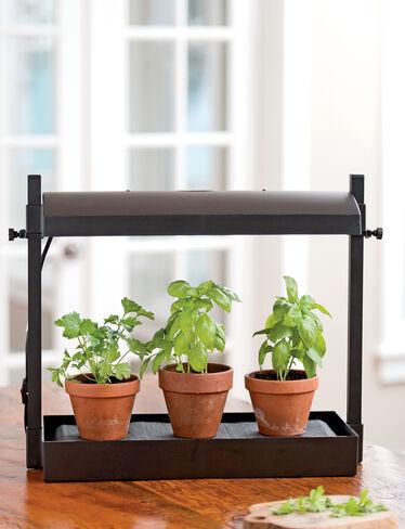 Kitchen herb garden micro grow light garden indoor for Indoor gardening lighting guide