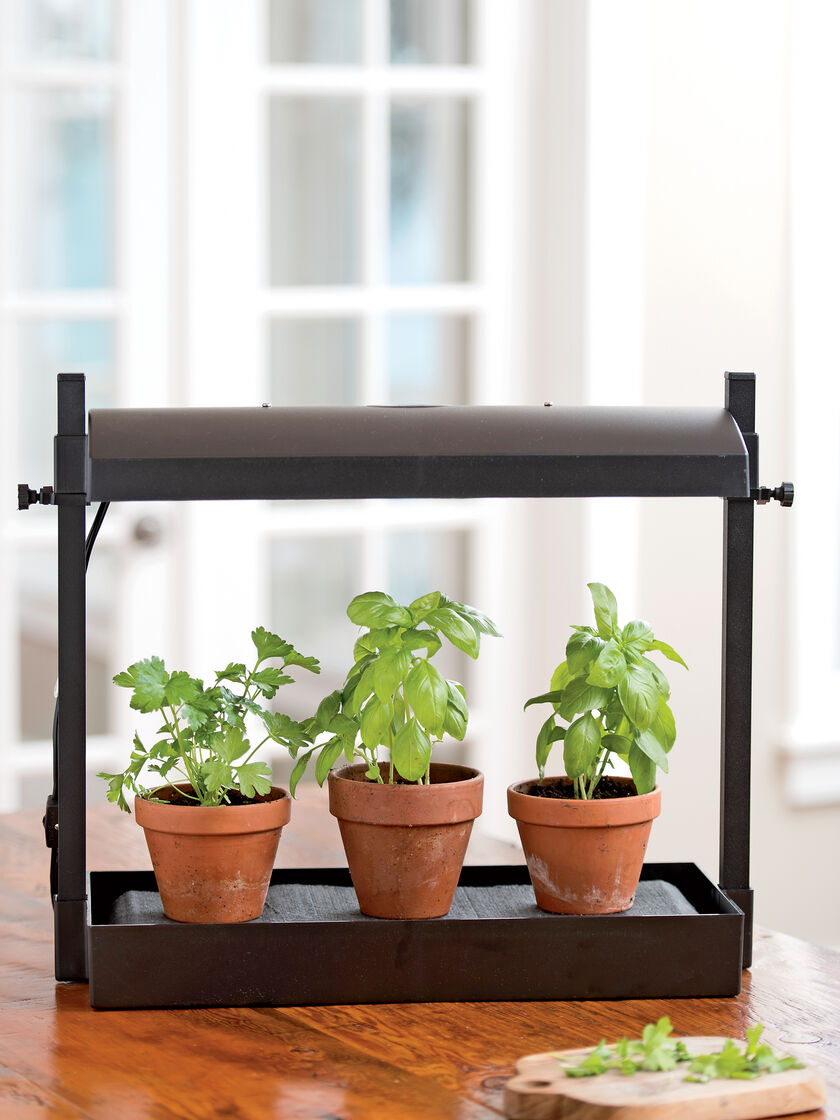 Indoor Kitchen Gardens Kitchen Herb Garden Micro Grow Light Garden Indoor Herb Garden
