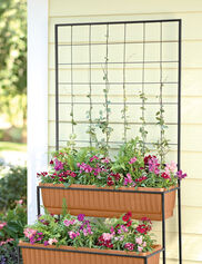 Two-Tier Cascade Planter with Trellis
