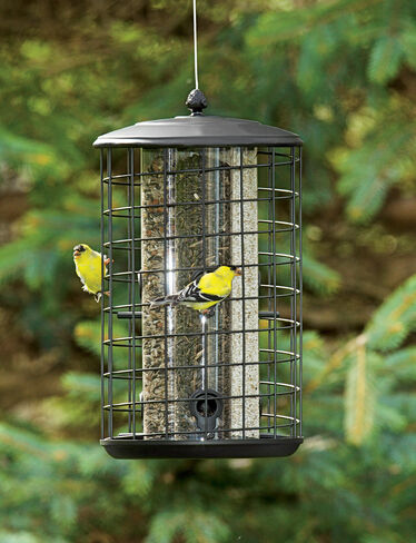 Triple Tube Birdfeeder