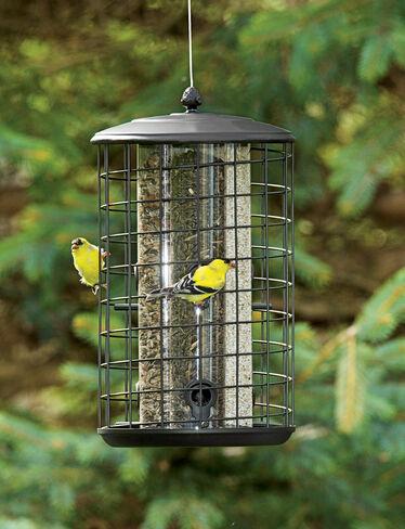 Triple Tube Birdfeeder