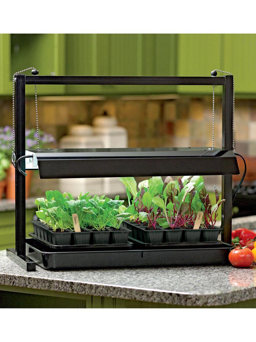 Small Table Top Grow Light with T5 Bulbs | Gardeners.com