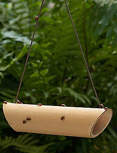 Ladybug Feeders. Set of 2
