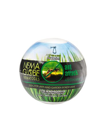 Nema Globe Ant Attack