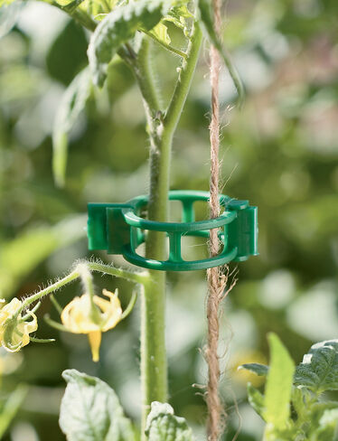 Garden Clips