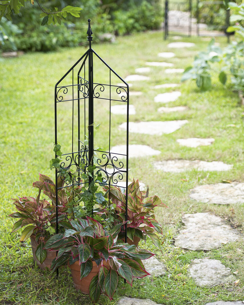 Metal trellis metal garden trellis free standing trellis for Free standing garden trellis designs