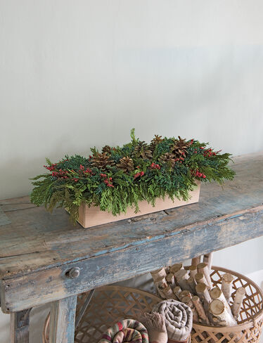 "Preserved Cedar Centerpiece, 25"" x 11"""
