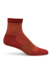Darn Tough Mini Stripe Crew Socks