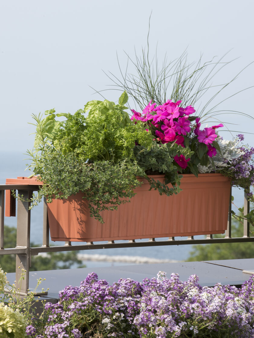 railing planters 36 accommodate 1 to thick deck railings. Black Bedroom Furniture Sets. Home Design Ideas