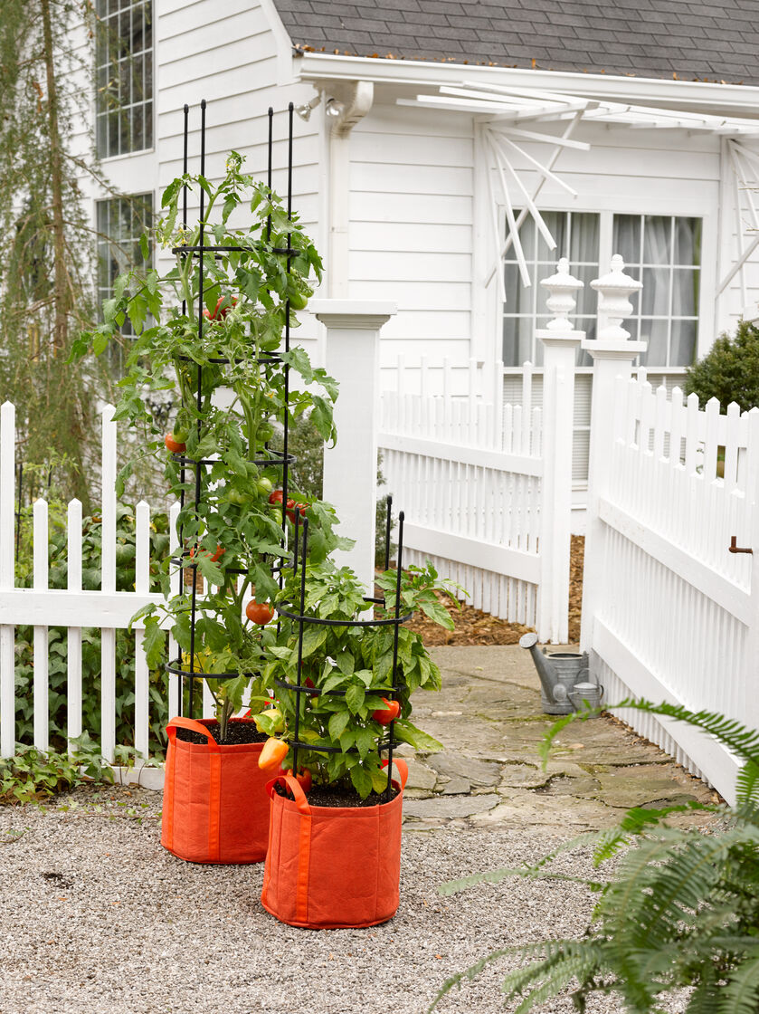 Tomato Grow Bag With 5 Integrated Cage Gardeners Com