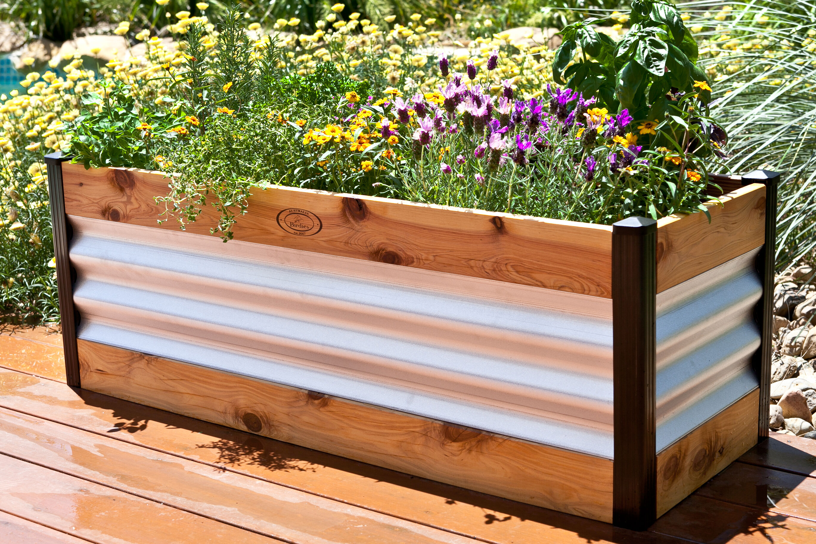 North Melbourne Corrugated Metal Raised Garden Beds Gets Modern Addition