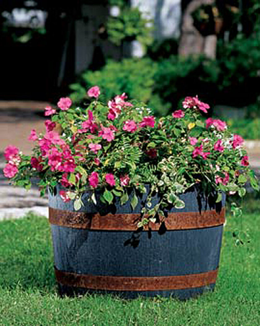 Self Watering Whiskey Barrel Gardener S Supply Company