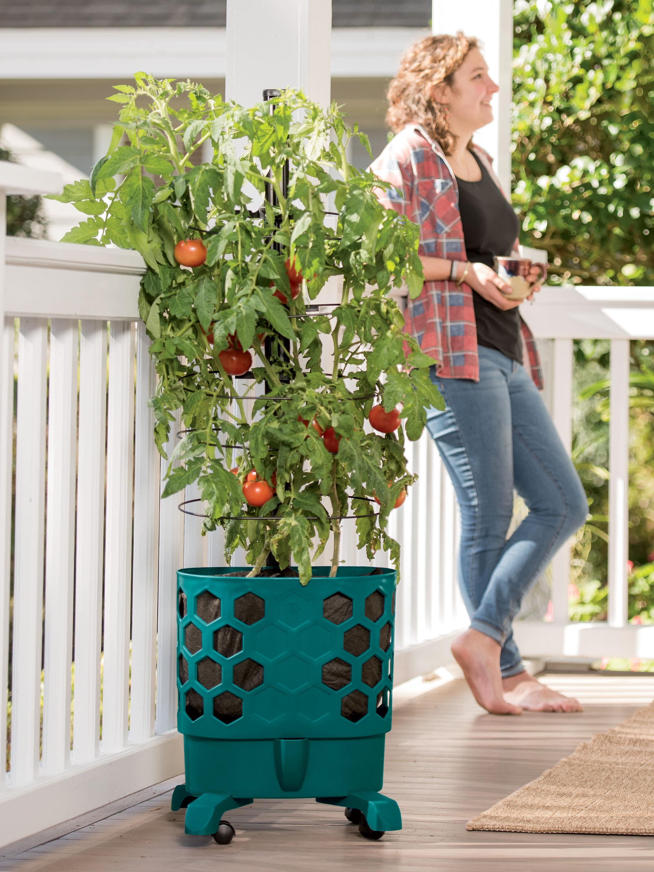 Balcony Garden Viva Self Watering Balcony Railing Planter