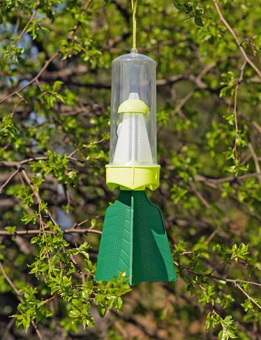 Rescue® Stink Bug Trap and Lures