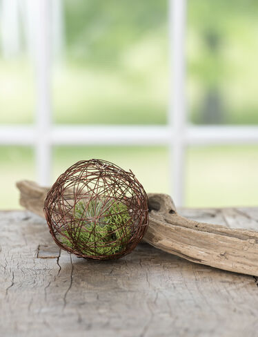 Mini Air Plant Geo Ball