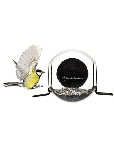Globe Window Birdfeeder
