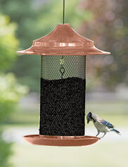 Copper Sunflower Seed Bird Feeder