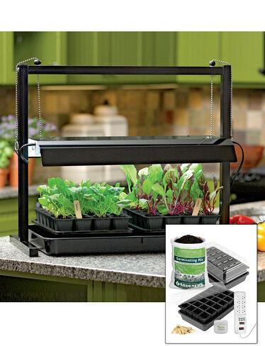 Compact Tabletop SunLite® Garden Jump Start Kit