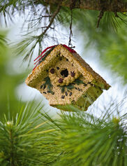 Birdseed Cottage