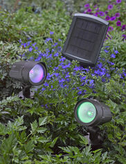 Color LED Solar Spotlights, Set of 2