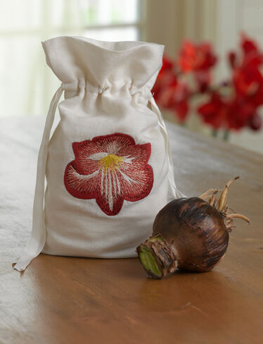Amaryllis with Embroidered Bag