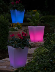 Solar Illuminated Planter, Small Square