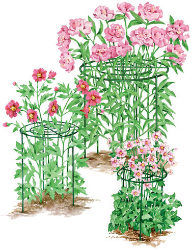 """12"""" Grow Through Supports, Set of 3 plant supports, garden trellis, garden supplies, organic garden supplies, vegetable garden supplies"""