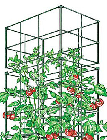 Tomato Cage Extension