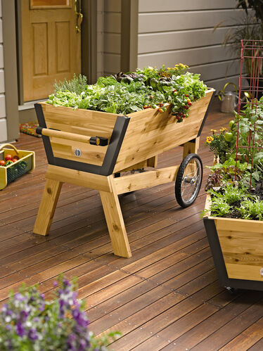 Image Result For What Soil To Use For Raised Vegetable Garden Beds