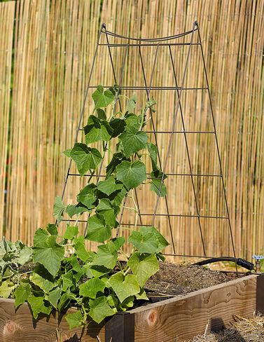 Wire A-Frame Trellis plant supports, garden trellis, garden supplies, organic garden supplies, vegetable garden supplies