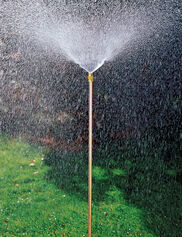 Hi-Rise Lifetime Sprinkler