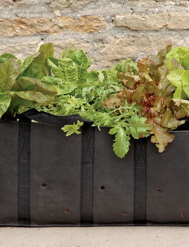 Salad Planting Bag
