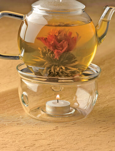 Tea Pot Warmer