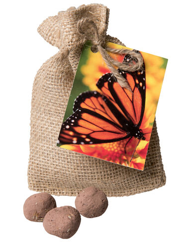 Monarch Butterfly Seed Balls
