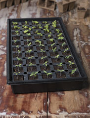 Smart Grow Seed Starting Tray