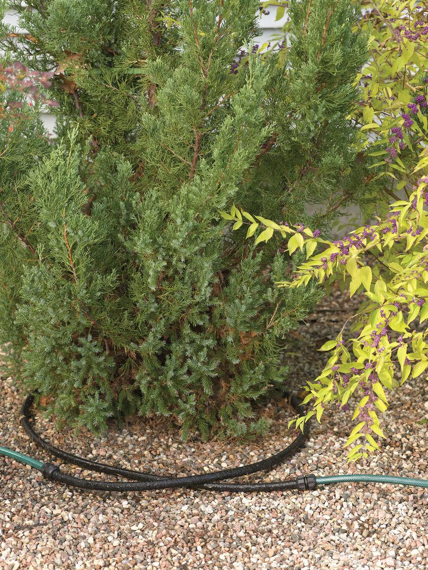 Landscape Soaker Hose Irrigation System Snip N Drip