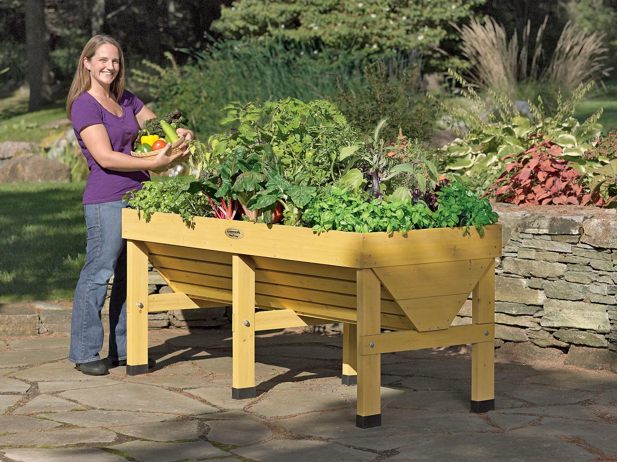 Elevated Garden Beds Raised Vegetable Gardens Gardenerscom