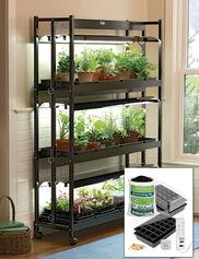 Standard 3-Tier SunLite® Garden Jump Start Kit