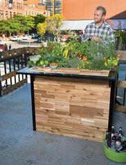 Plant A Bar, 2' x 4'