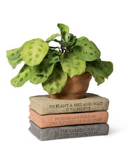 Flower Pot with Book Saucer Library