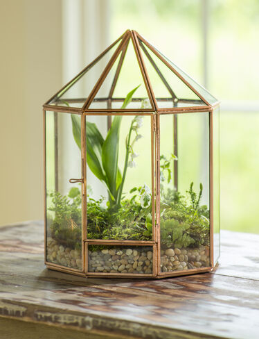 Gazebo Tabletop Terrarium